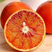 浦甜 塔罗科血橙 65-70mm 3斤