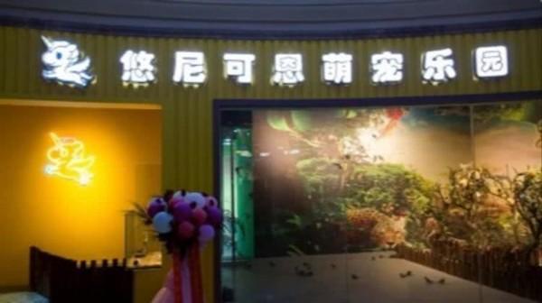 一家三口嗨玩一天等于一杯咖啡的价格 !上海悠尼可恩萌宠乐园门票