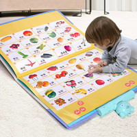 有声挂图拼音卡片发声语音宝宝幼儿童早教启蒙认知益智玩具识字有声读物 *5件