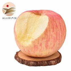 红富士苹果 脆甜苹果 新鲜水果 带箱10斤装