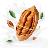 坚果零食干果山核桃500g 奶油味长寿果