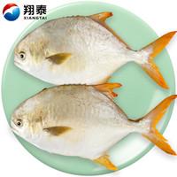 翔泰 冷冻二去金鲳鱼700g 2条*5件+泰式烤鱼 580g