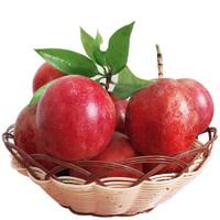 果内猫 广西百香果 5斤 约50-55个