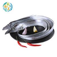 鲜到鲜得 东海带鱼 1kg *12件