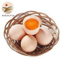 散养土鸡蛋 10枚 *4件