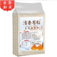 清香有稻 五常大米长粒稻香 10斤精选 +凑单品