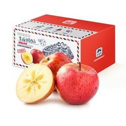 佳多果 新疆阿克苏苹果 果径75mm-80mm  约2kg