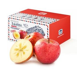 京东PLUS会员 : 佳多果 新疆阿克苏苹果 果径75mm-80mm  约2kg