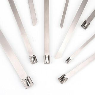 赛拓(SANTO)自锁式304不锈钢扎带 金属捆扎带 耐高温耐腐蚀30根/包4.6*1400mm 0158