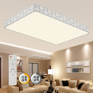 HAIDE 海德照明 雪花 LED客厅吸顶灯  116W 长方形