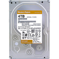 Western Digital 西部数据 金盘 企业级硬盘 4TB 7200rpm 256MB WD4003VRYZ
