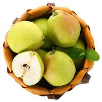 新疆库尔勒香梨 精选特级 单果120g以上 净重2.5kg  新鲜水果