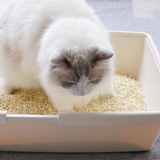 N1 玉米豆腐猫砂17.5L*3 2.0级小颗粒植物猫砂豆腐砂无尘吸水易结团猫砂盆猫咪用品非膨润土干垃圾