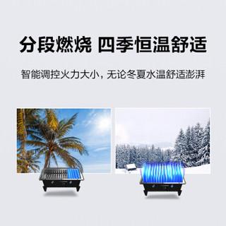 史密斯(A.O.Smith)16升燃气热水器 家用 双温度传感器 智能恒温 大屏设计 防冻 JSQ31-J0(天然气)