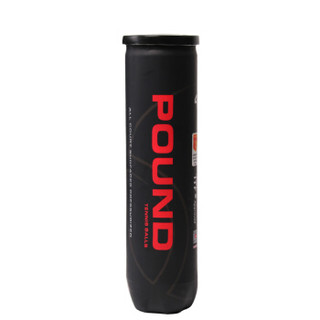天龙 Teloon 网球P4高弹耐磨训练球比赛练习用球 pound
