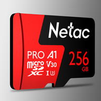 Netac 朗科 P500 A1 V30 TF存储卡 256GB