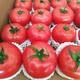 潮客 攀枝花露天红囊西红柿 5斤 约20-30个 19.9元包邮(2人拼购)