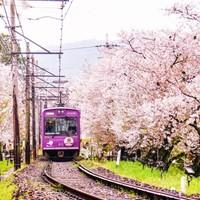 日本软银3-120天电话卡 4G流量 3G无限低速流量