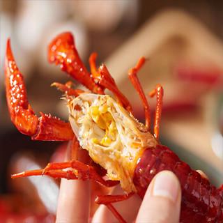方物野誌 小龙虾 十三香味 750g 4-6钱
