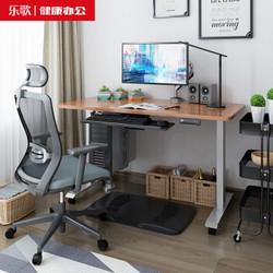 Loctek 乐歌 E2 智能电动升降电脑桌 120*60cm