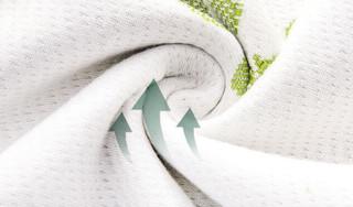 Latex Systems 泰国天然乳胶床垫 85D密度 180*200*7.5cm
