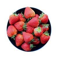 芬果时光 新鲜红颜 巧克力奶油草莓 3斤 *2件