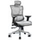 SITZONE DS-001A 人体工学电脑座椅 (铂金版) 668元包邮(双重优惠)