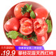 攀枝花 露天自然熟大西红柿 5斤装 约20-30个 *2件 29.8元(需用券,合14.9元/件)