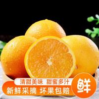 四川高山金膛脐橙水分充足多汁新鲜水果  5斤中果