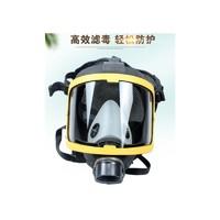 六氟化硫防毒面具全面罩