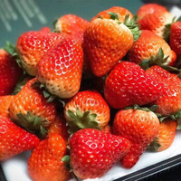 若亦果业 丹东九九草莓 精选大果 3斤装