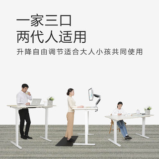 Loctek 乐歌 乐歌E2经济小户型电动升降桌站立办公电脑台式桌升降桌腿学习书桌