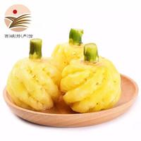 云南香水菠萝 5斤装送削皮工具 *2件