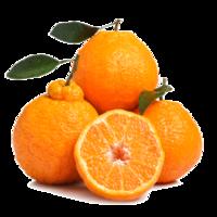 美果汇 四川不知火丑橘 精品果 2.5斤装 *2件