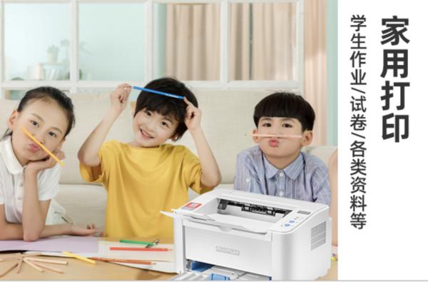 PANTUM 奔图 P2206 黑白激光打印机
