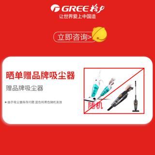 格力(GREE)除湿机 家用 工业 抽湿机 卧室 地下室 大功率除湿器40升/天 DH40EI