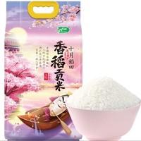 十月稻田 香稻贡米 5kg