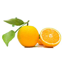 奉节脐橙 75-90mm精选大果 10斤净重4.7kg