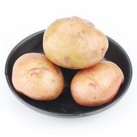 甘福园 云南红皮小土豆 10斤