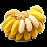 贵州 安龙小米蕉糯米蕉 1斤装 *9件