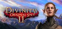 《神界:原罪2》PC数字版游戏