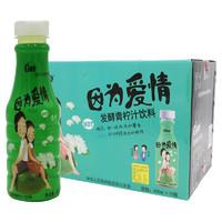 限地区:金果源 发酵青柠汁 450ml*15瓶 整箱装