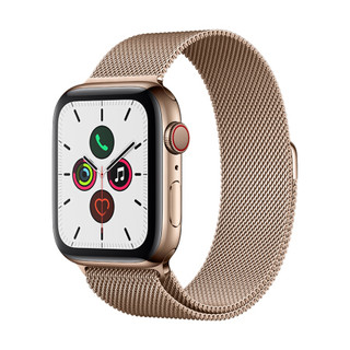Apple Watch Series 5智能手表(GPS 蜂窝网络款 44毫米金色不锈钢表壳 金色米兰尼斯表带 MWWJ2CH/A)