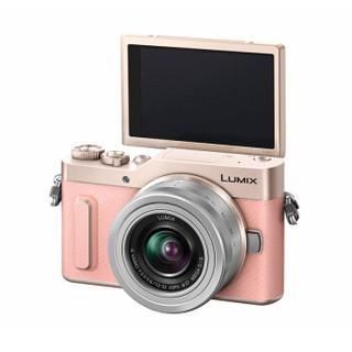 Panasonic 松下 DMC-GF10GK 微单相机
