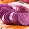 砀宁果品 新鲜紫薯 5斤