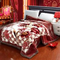 辰枫家纺 新款双层拉舍尔毛毯加厚保暖毯子婚庆四季盖毯 床上用品 28驼宜12斤 200*240cm