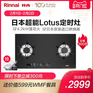 Rinnai/林内RB-2E01LT天燃气灶双灶家用天然气嵌入式非台式燃气灶