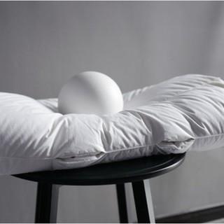 值友专享 : SIDANDA 诗丹娜 95%白鹅绒引力枕