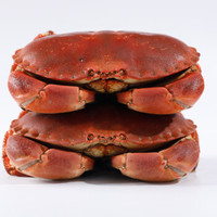 YOFRESH 爱尔兰进口面包蟹 800g+