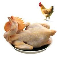 温氏 供港农养鸡 1kg *4件